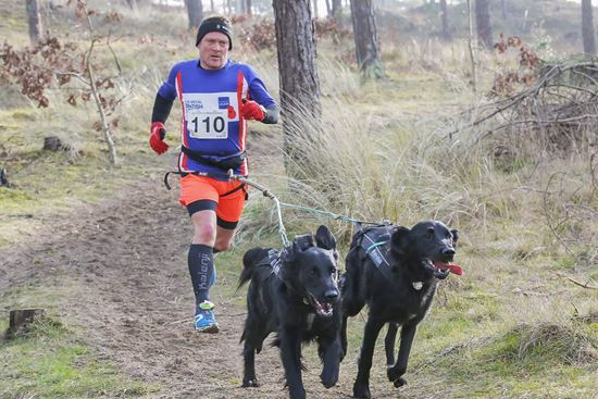 Picture of Canicross  16th & 17th November 2019