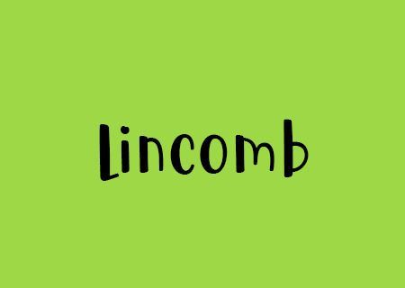 Picture for category 16th & 17th January 2021 Lincomb