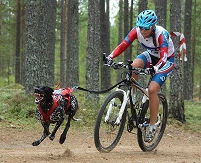 Picture of Bikejor 3rd & 4th October 2020